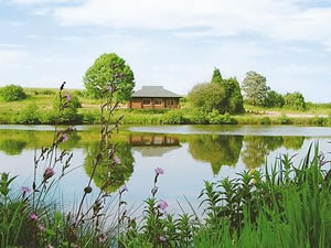 Self catering breaks at Kingfisher Lodge in Hagworthingham, Lincolnshire