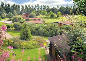Self catering breaks at Firs Deluxe Lodge at Blairgowrie Holiday Park in Blairgowrie, Perthshire